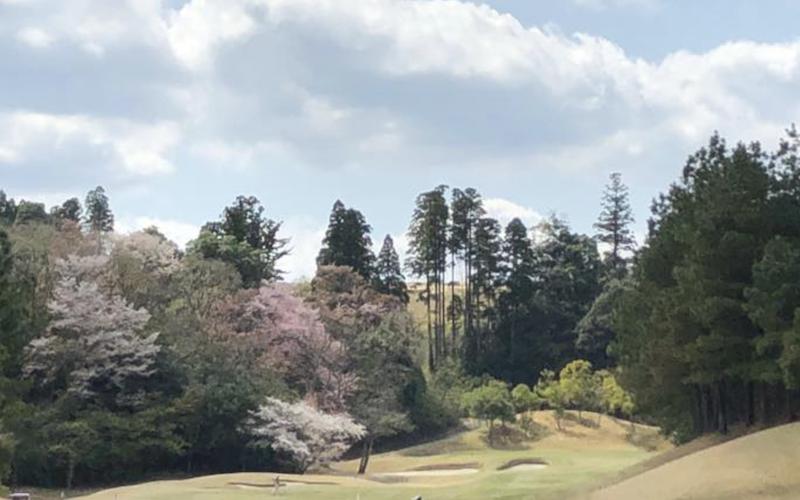 ゴルファーの「終活」